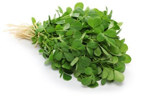 Bacopa monnieri extract PrimeMind flaws
