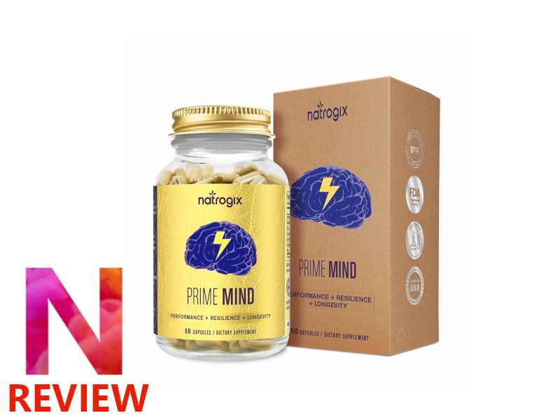 PrimeMind review